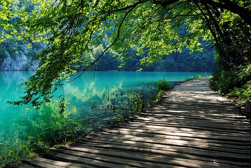 lake-landscape-nature-path-photography-Favim.com-358881